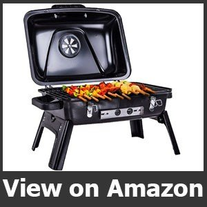 Pinty 250 Square Inch Portable Folding Charcoal Grill