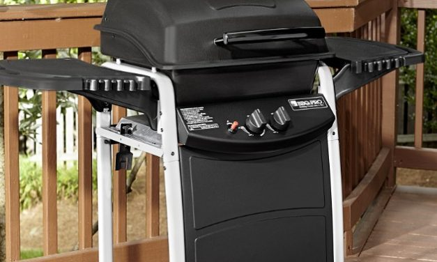 Best 2 Burner Gas Grills Of 2021 (Reviews & Guide)
