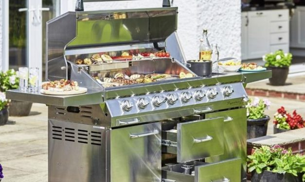 Top 4 Best 6 Burner Gas Grills Reviews – 2021
