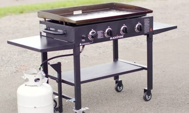 Top 10 Best Blackstone Grills in 2021