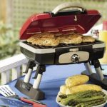 Top 10 Best Small Gas Grills in 2020